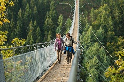 Pont Geierlay, Hunsrück