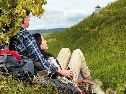 Séjour de randonnée à Bernkastel-Kues, vallée de la Moselle
