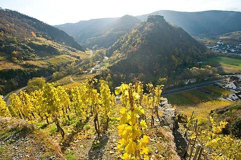 Saffenburg bei Mayschoss im Herbst, Ahrtal
