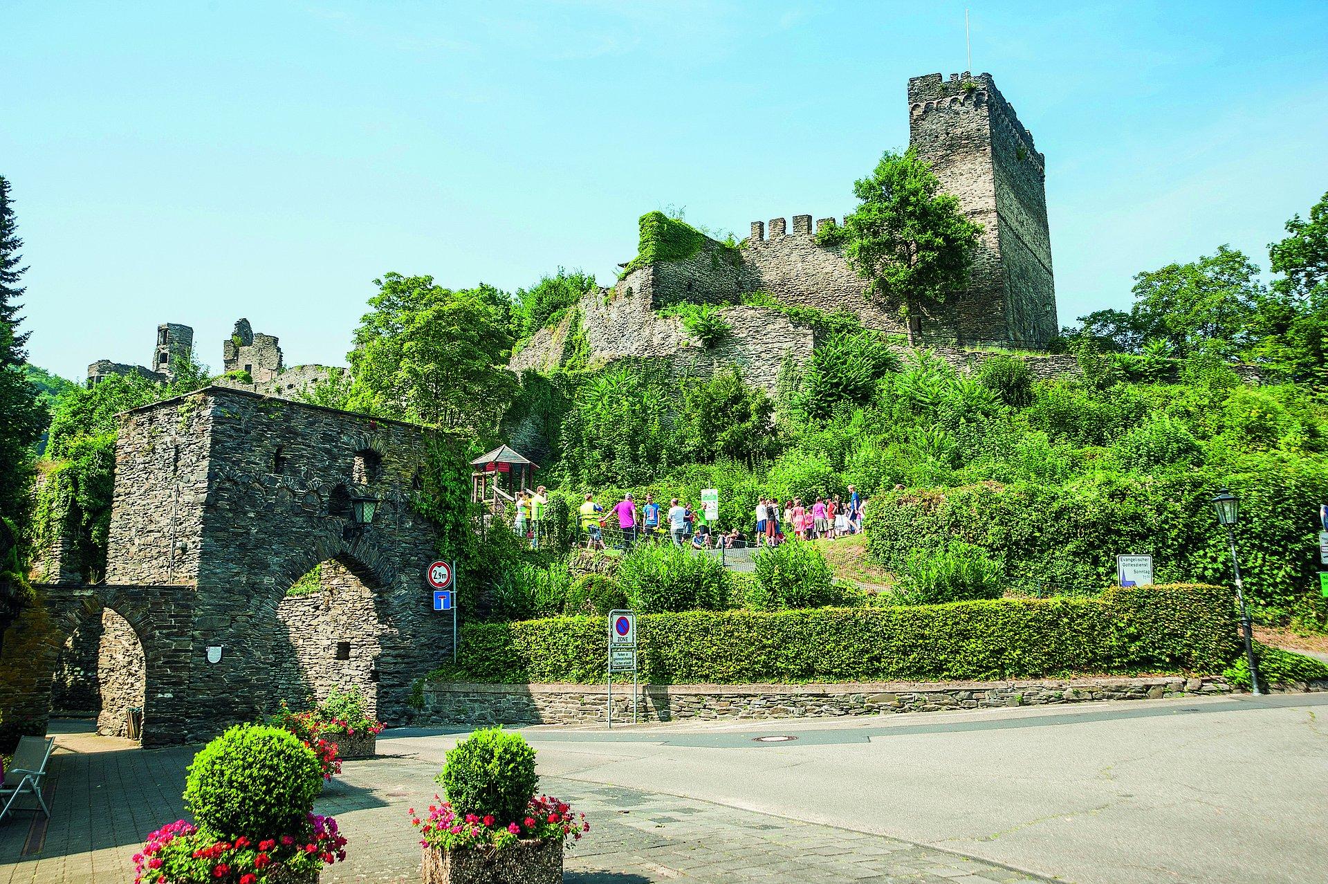 Blick auf die Burgruine Altwied, Romantischer Rhein