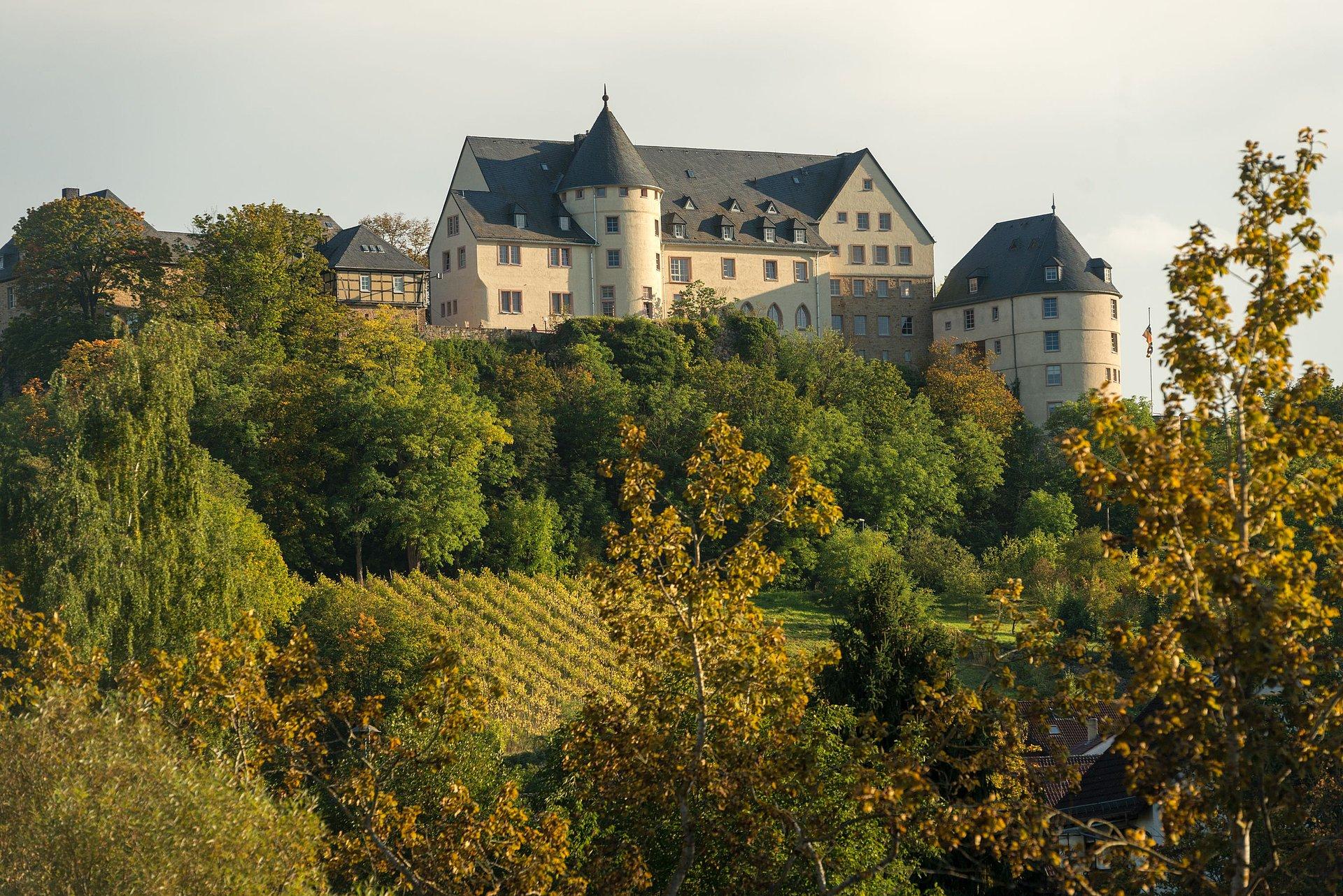 Die Ebernburg in Bad Münster am Stein-Ebernburg, Nahe