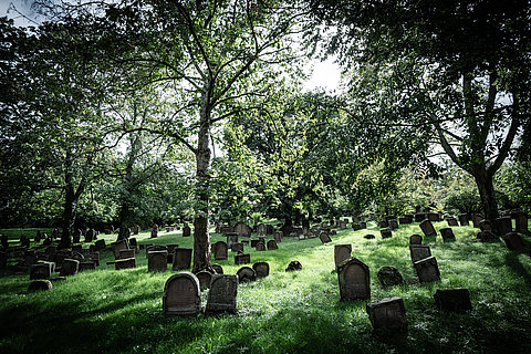 Jewish cemetery in Worms, Rhine-Hesse