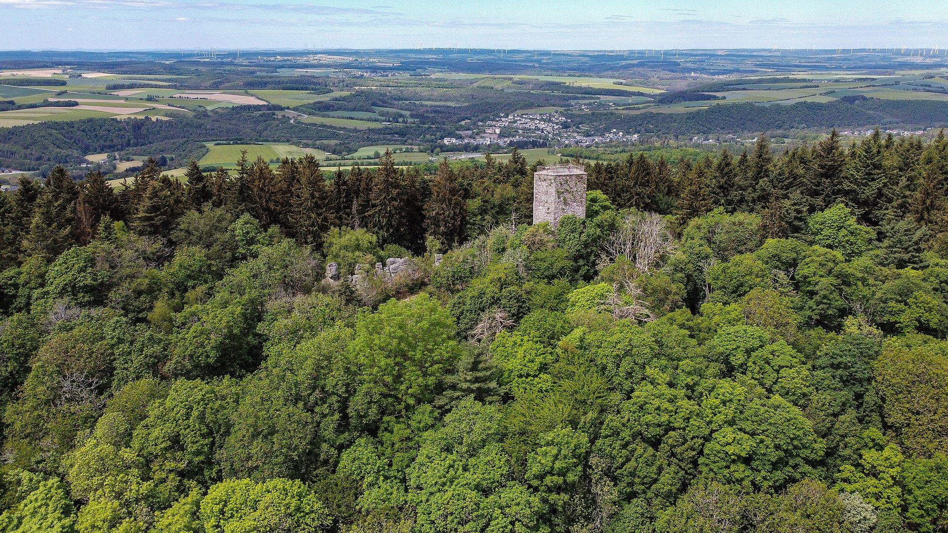 Blick auf die Burgruine Koppenstein, Hunsrück
