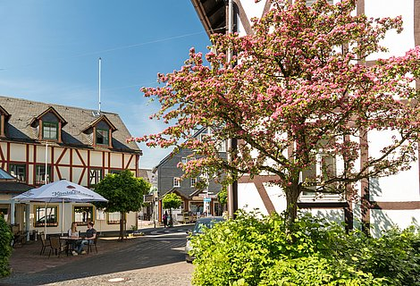 Relax in the spa zone of Bad Marienberg, Westerwald