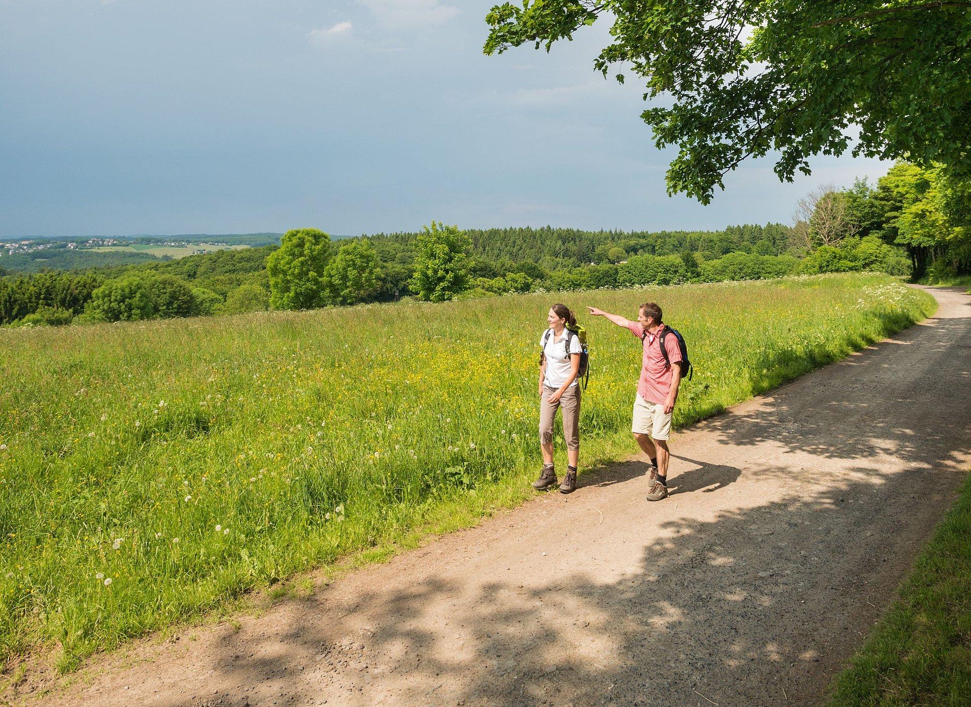 Wandern auf der WällerTour Klosterweg bei Kurtscheid, Westerwald