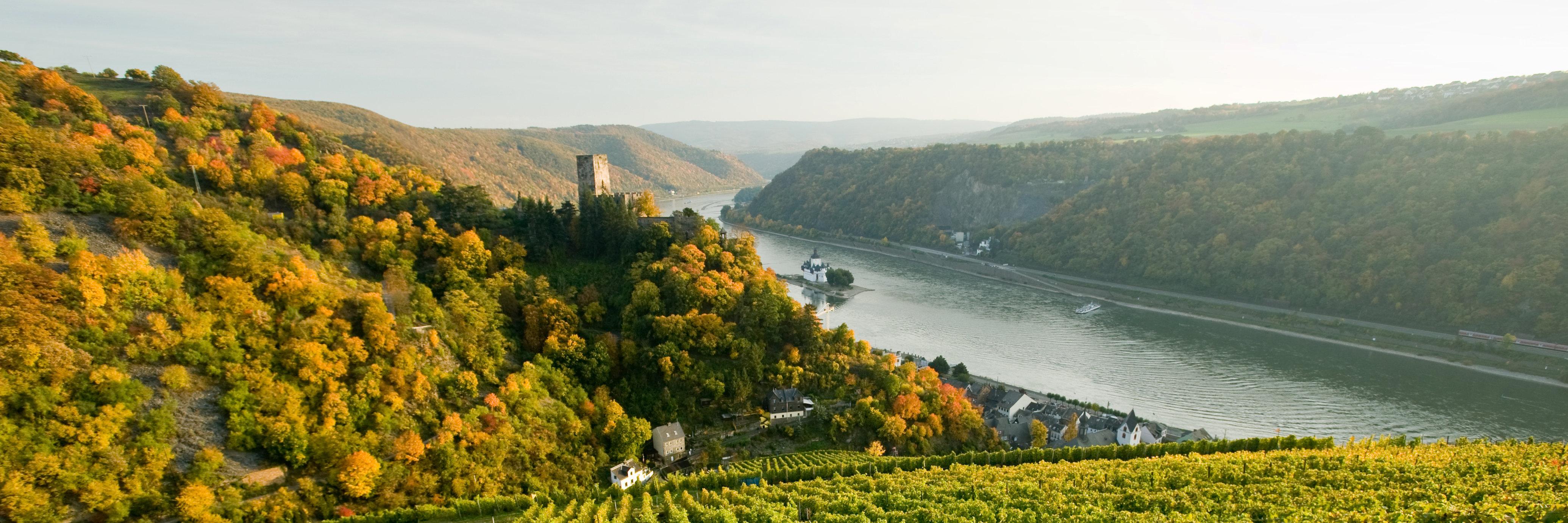 Wandern auf dem Rheinsteig: Weinberge mit Blick auf Burg Pfalzgrafenstein, Romantischer Rhein