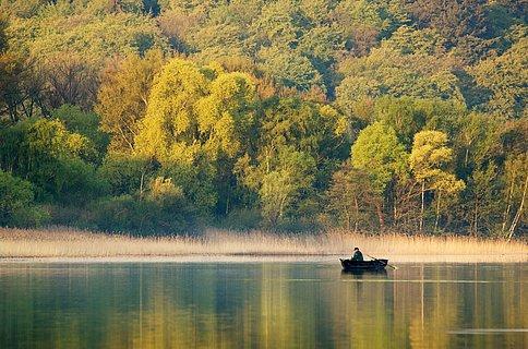 Stimmungsvoller Laacher See im Nationalen Geopark Laacher See