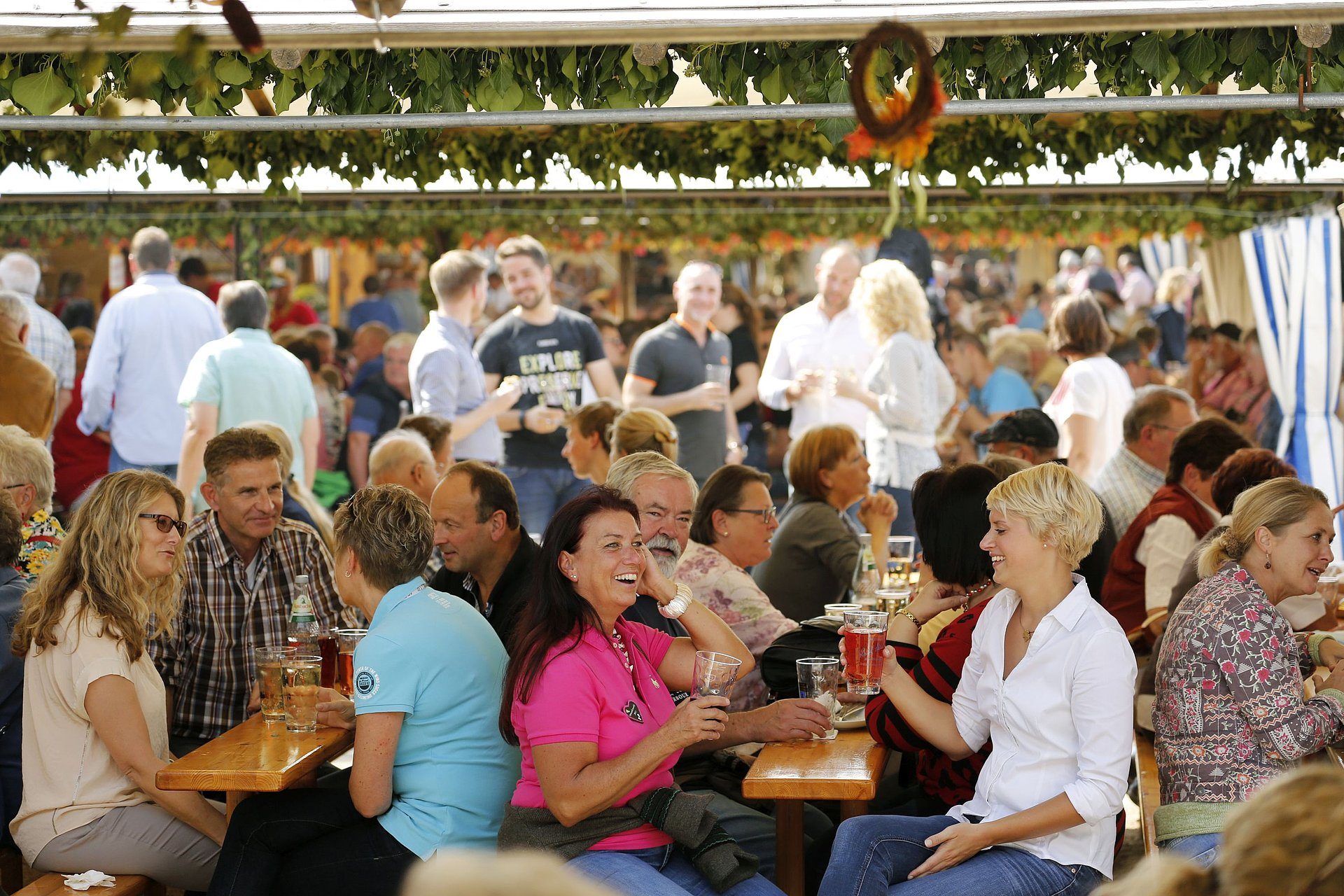 "Enjoy wine at ""Dürkheimer Wurstmarkt"" in Bad Dürkheim, Palatinate"