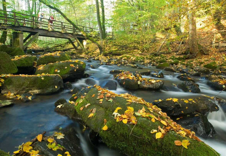 Bridge over Holzbach Gorge near Seck, Westerwald