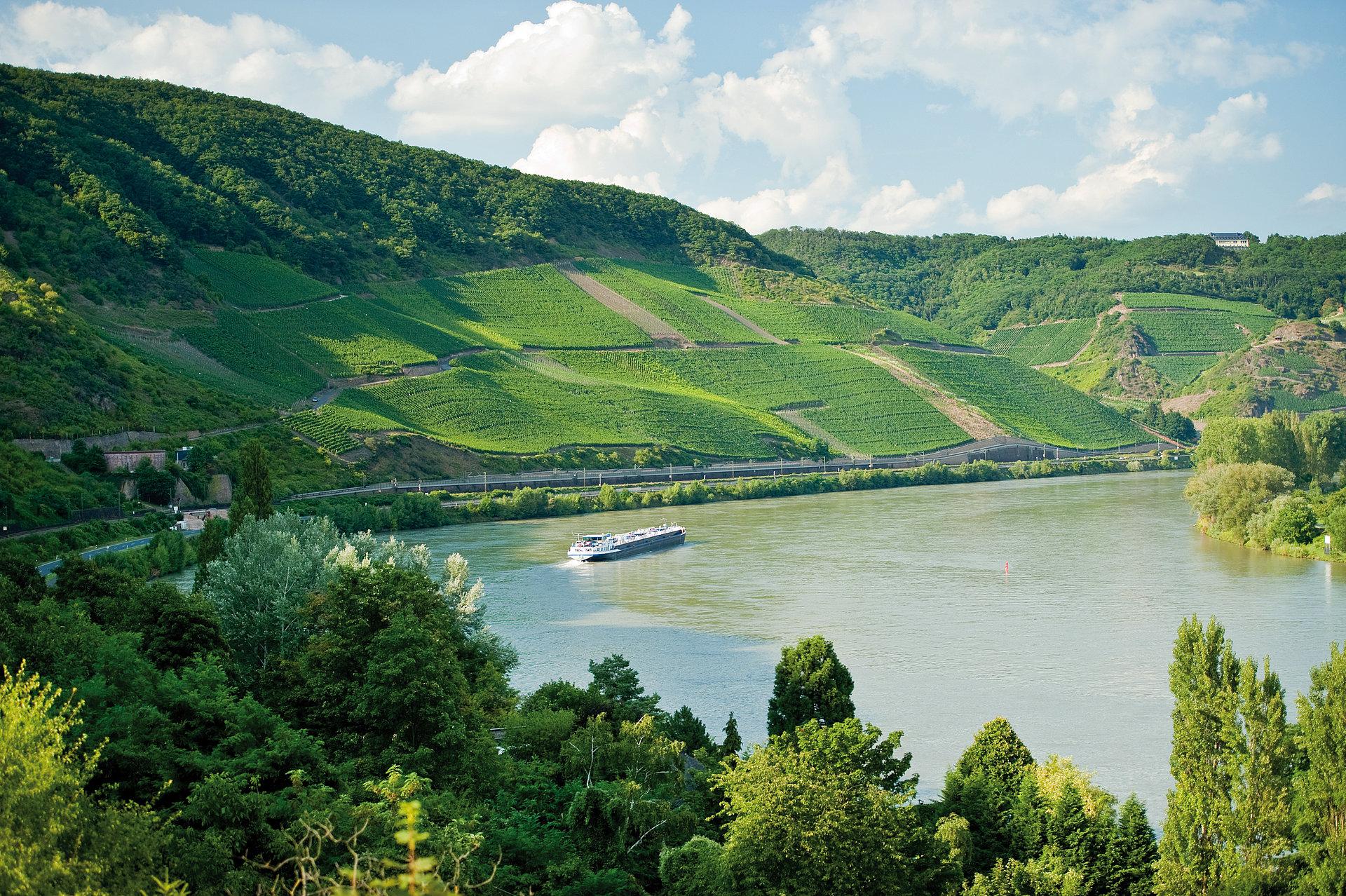 Blick auf den Bopparder Hamm, Romantischer Rhein