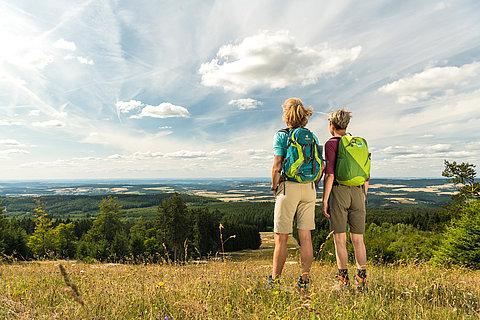 Uitzicht van de berg Erbenskopf, Hunsrück