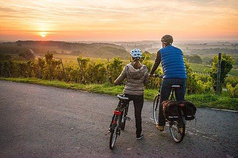 Radtour auf dem Radweg Deutsche Weinstraße im Herbst, Pfalz
