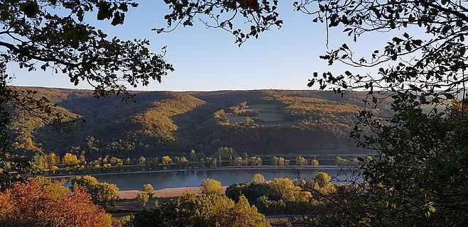 Premium-rondwandelingen langs de Romantische Rijn