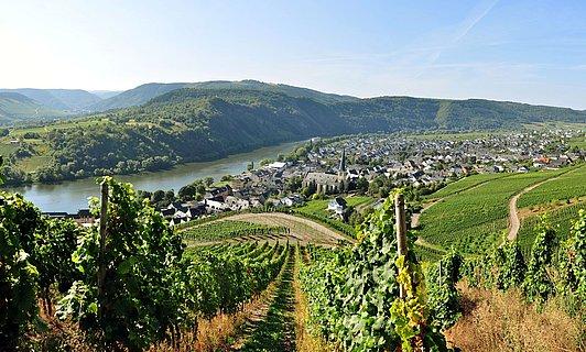 Vue de la ville de Kröv, vallée de la Moselle