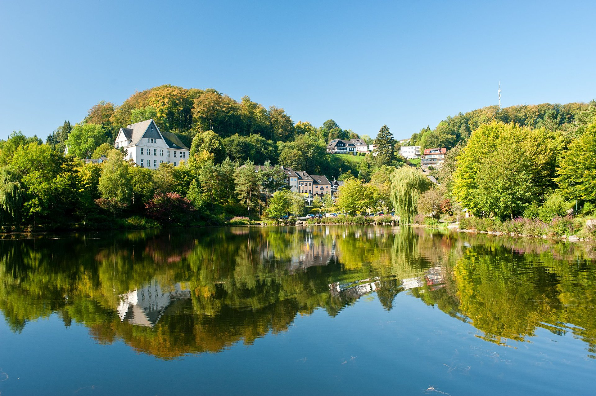 Schwanenweiher Blankenheim, Eifel