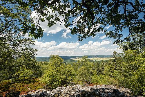 Ausblick Traumschleife Kirschweiler Festung im Nationalpark Hunsrück-Hochwald, Nahe
