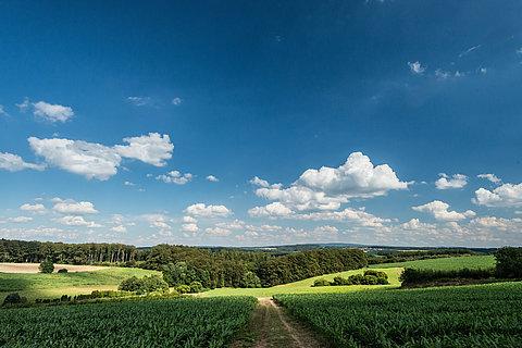 "The trail ""Iserbachschleife"", Westerwald"