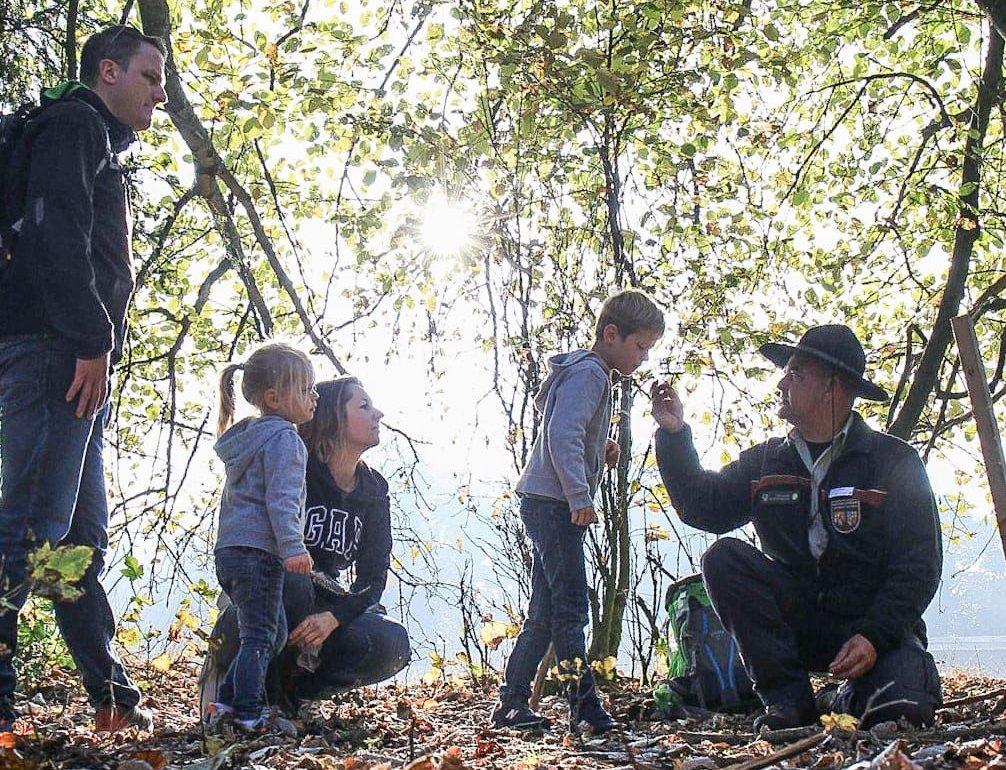 Rangertour für Familien im Nationalpark-Hunsrück-Hochwald