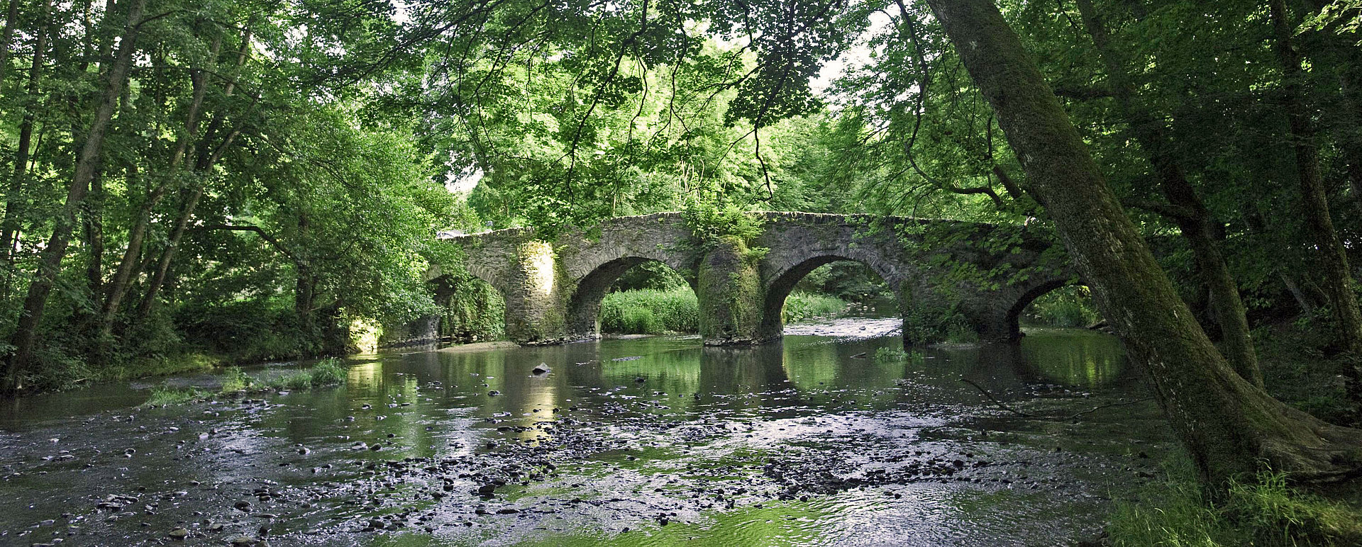 Bridge in the valley of the Nister, Westerwald