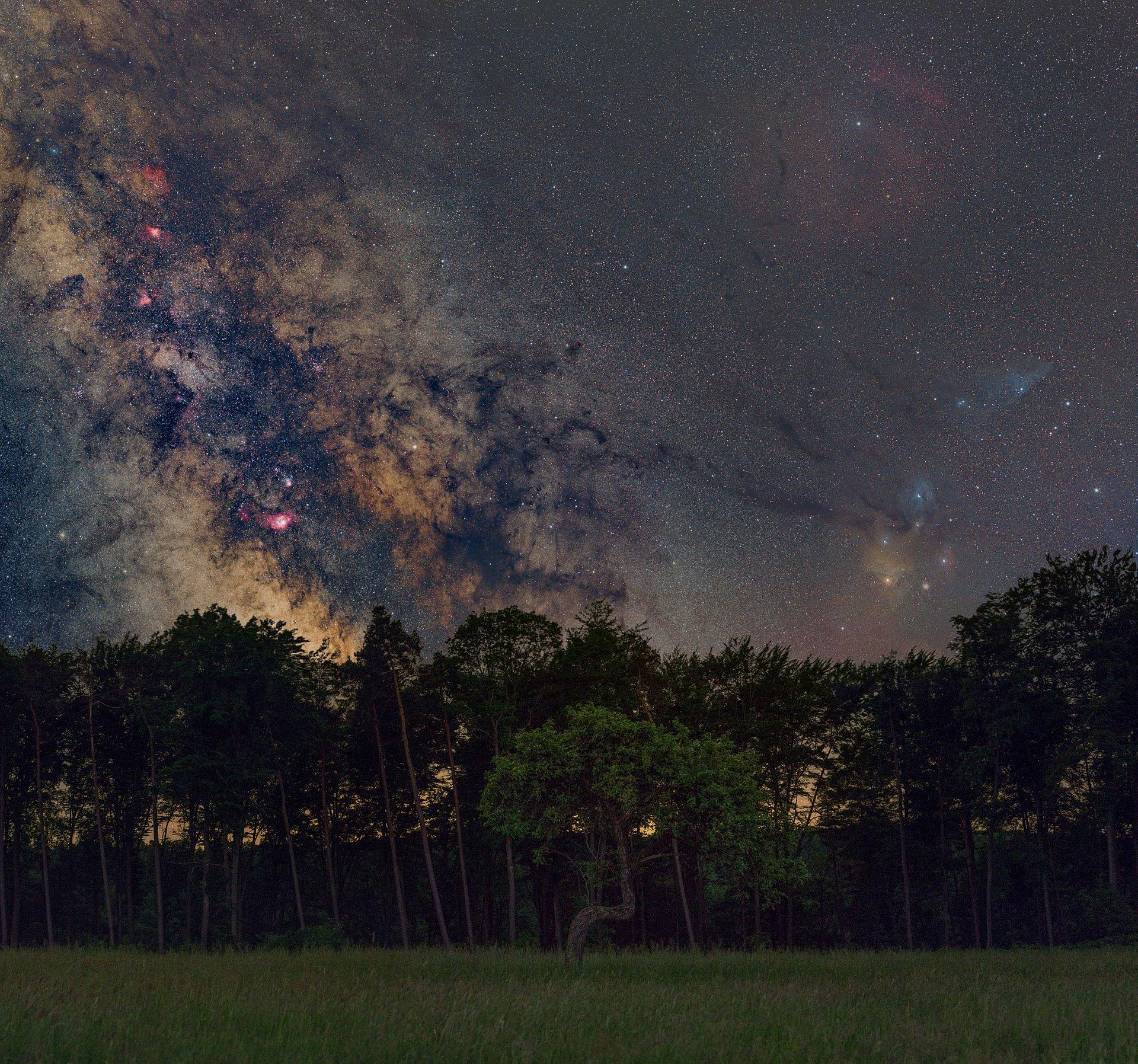 Sternenhimmel über dem Pfälzerwald, Pfalz