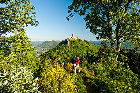 Blick auf die Burg Trifels bei Annweiler am Trifels, Pfalz