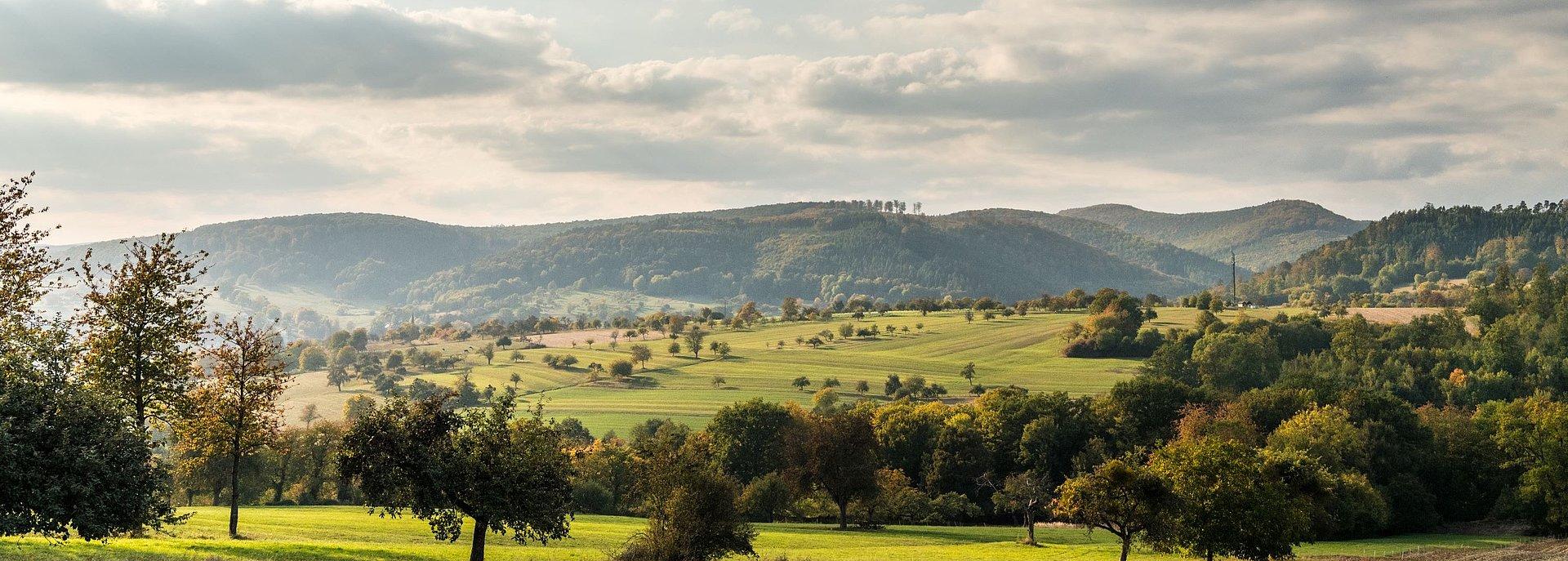 Deutsch-französischer Burgenweg im Pfälzerwald, Pfalz