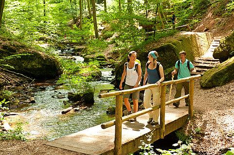 Randonnée à travers les gorges de Karlstal sur le circuit Pfälzer Waldpfad, Palatinat