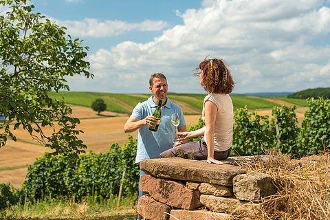 Wijn genieten in de wijngaarden, Nahe-regio