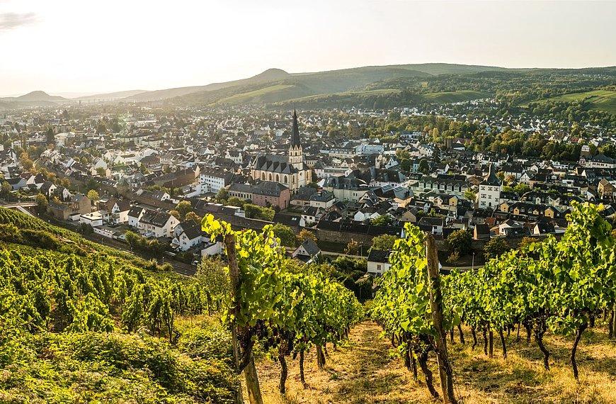 Bad Neuenahr-Ahrweiler, Ahr valley