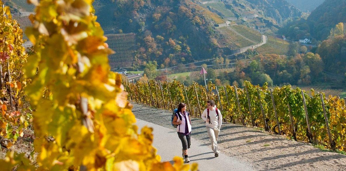 Wanderung auf dem Rotweinwanderweg, Ahrtal