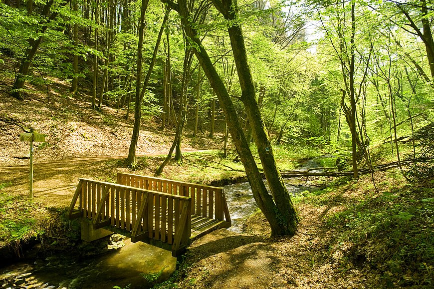 Brücke im Völkerwiesenbachtal, Westerwald