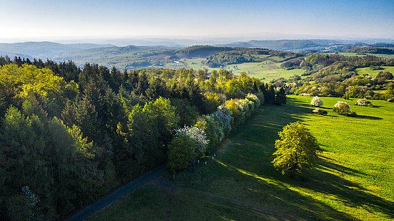 Blick über die Landschaft am Knoten, Westerwald