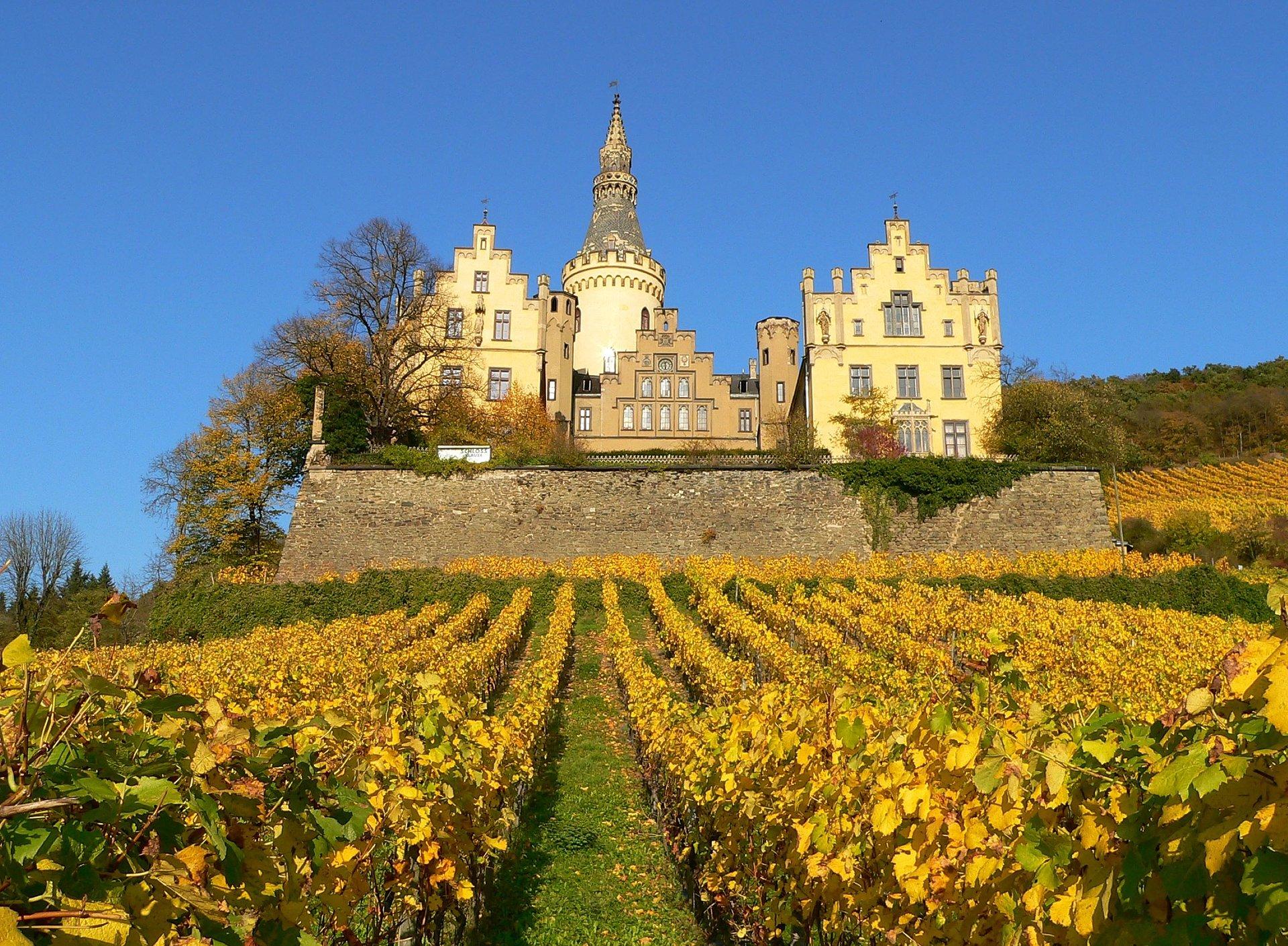 Kasteel Arenfels bij Bad Hönningen omgeven door wijngaarden, Romantische Rijn