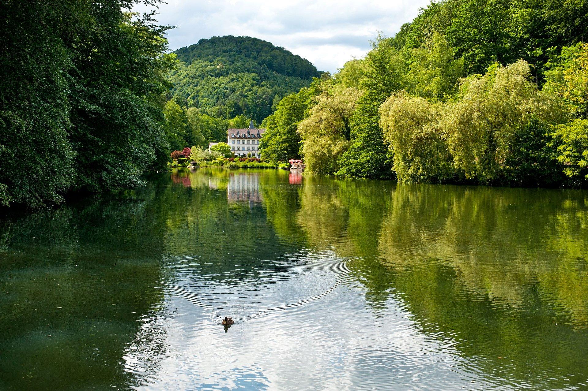 Pauzeren en genieten van de natuur bij de zwanenvijver bij Bad Bergzabern, Palts