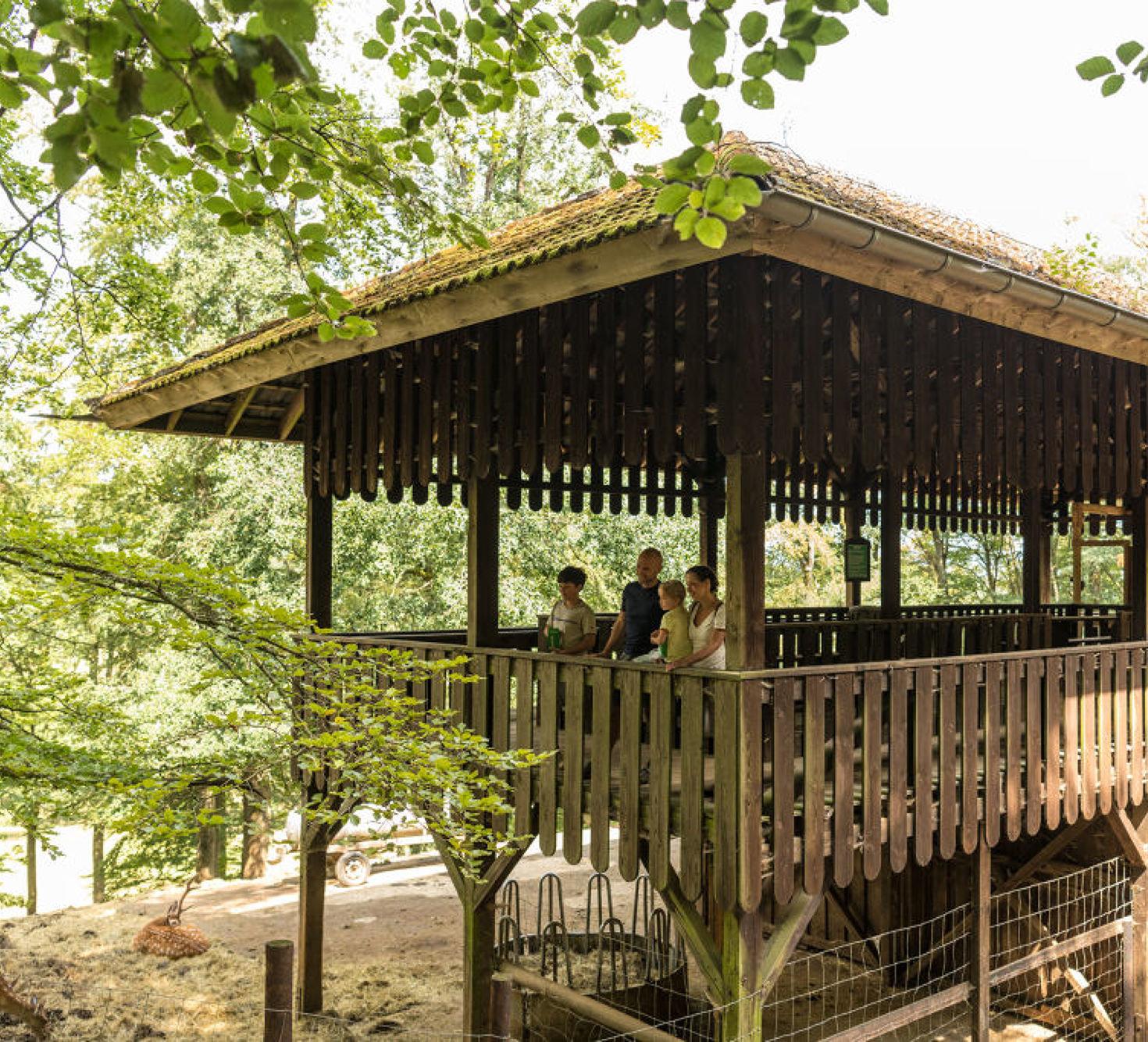 Familienausflug zum Wild- und Erlebnispark in Daun in der Vulkaneifel, Eifel