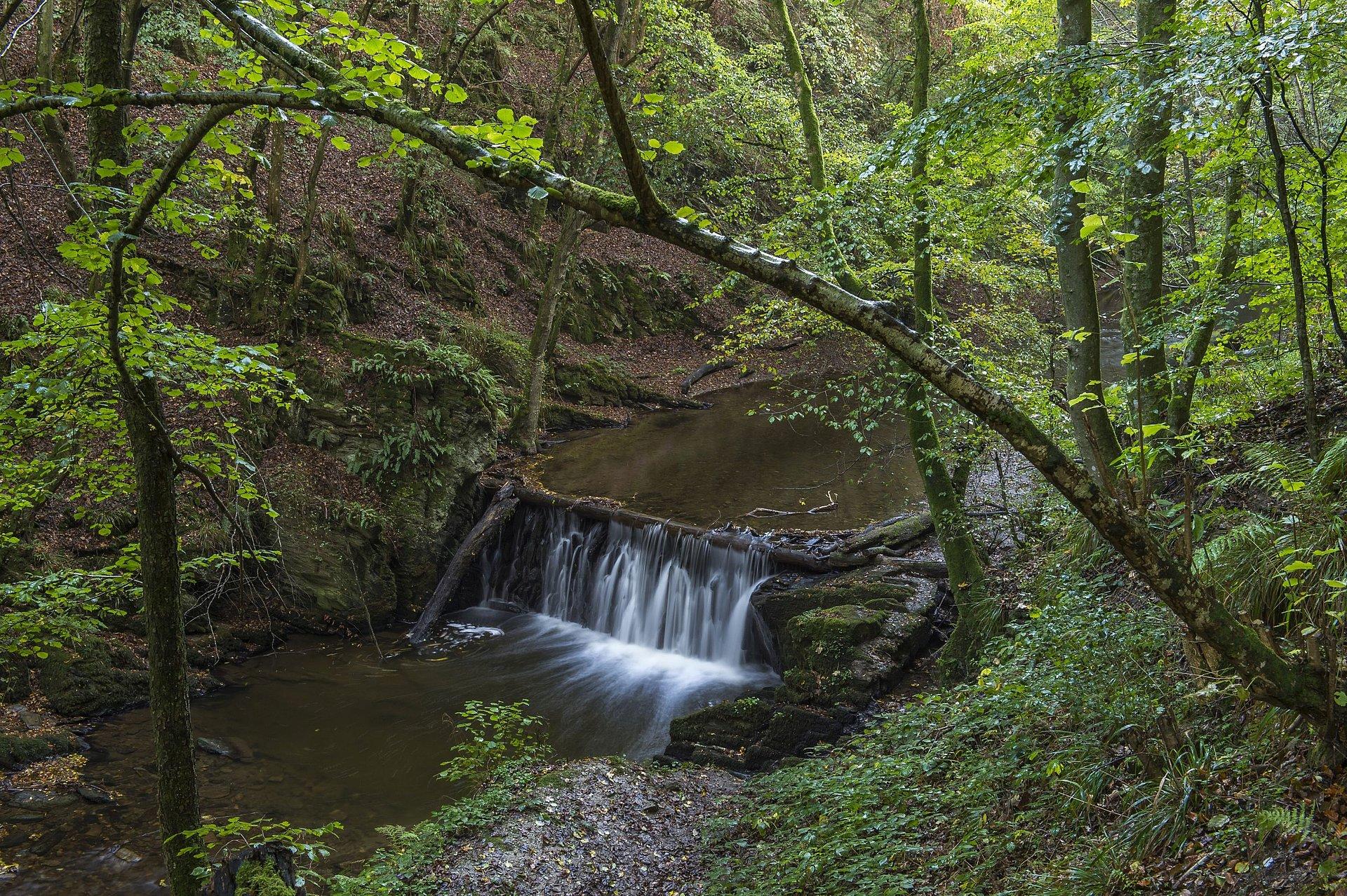 Wasserfall im Baybachtal, Hunsrück