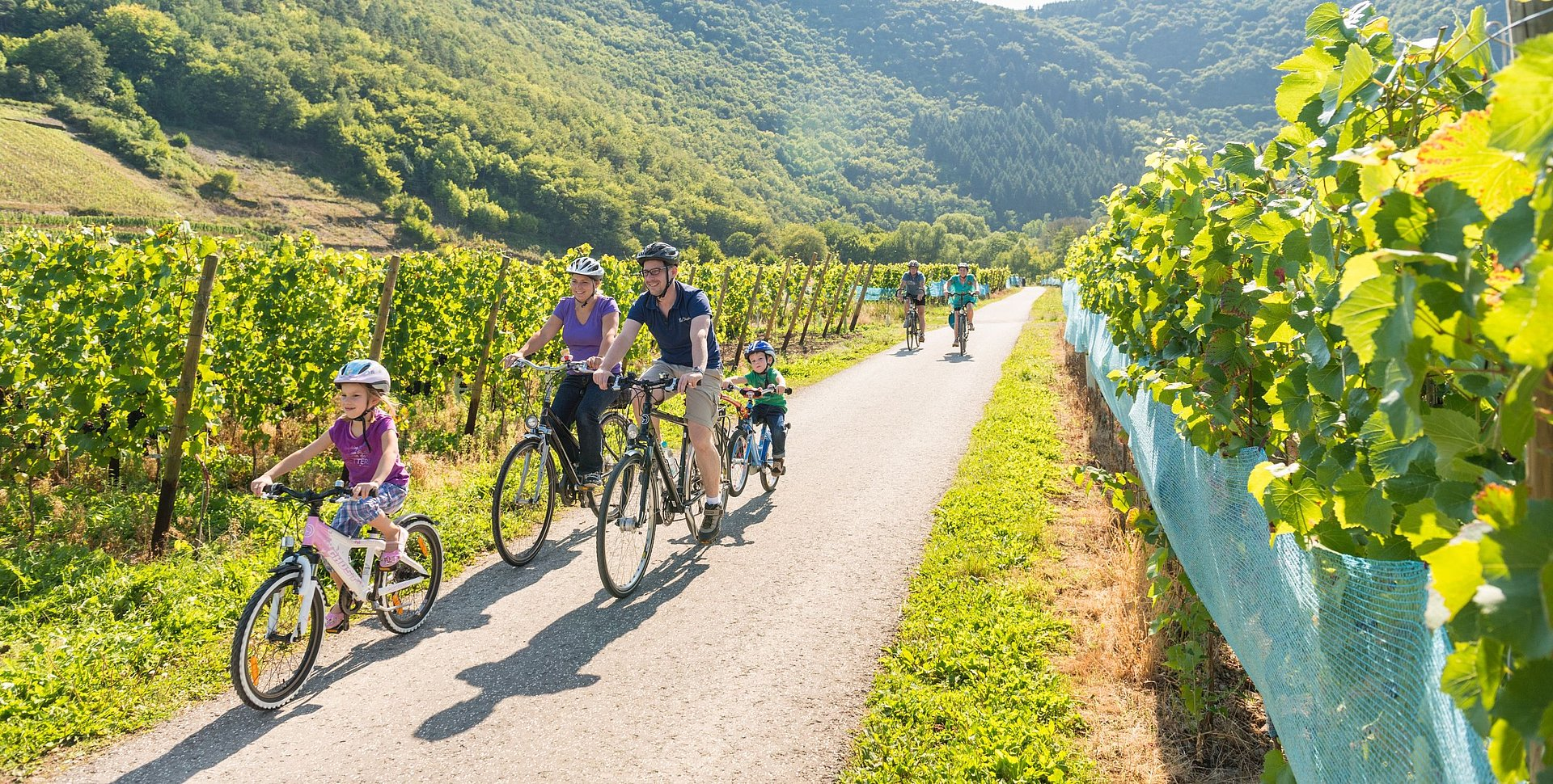 Familientour auf dem Ahr-Radweg bei Mayschoss, Ahrtal