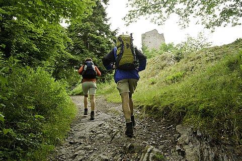 Wandern auf dem Eifelsteig bei den Manderscheider Burgen, Eifel