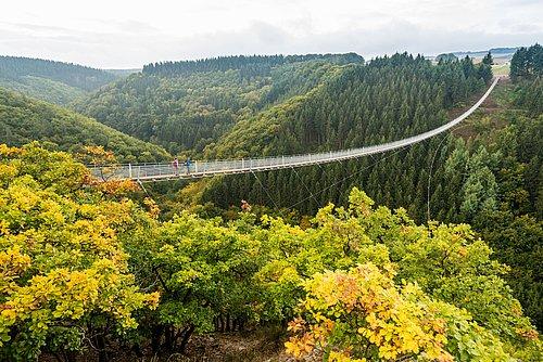 Hängeseilbrücke Geierlay zwischen Sosberg und Mörsdorf, Hunsrück