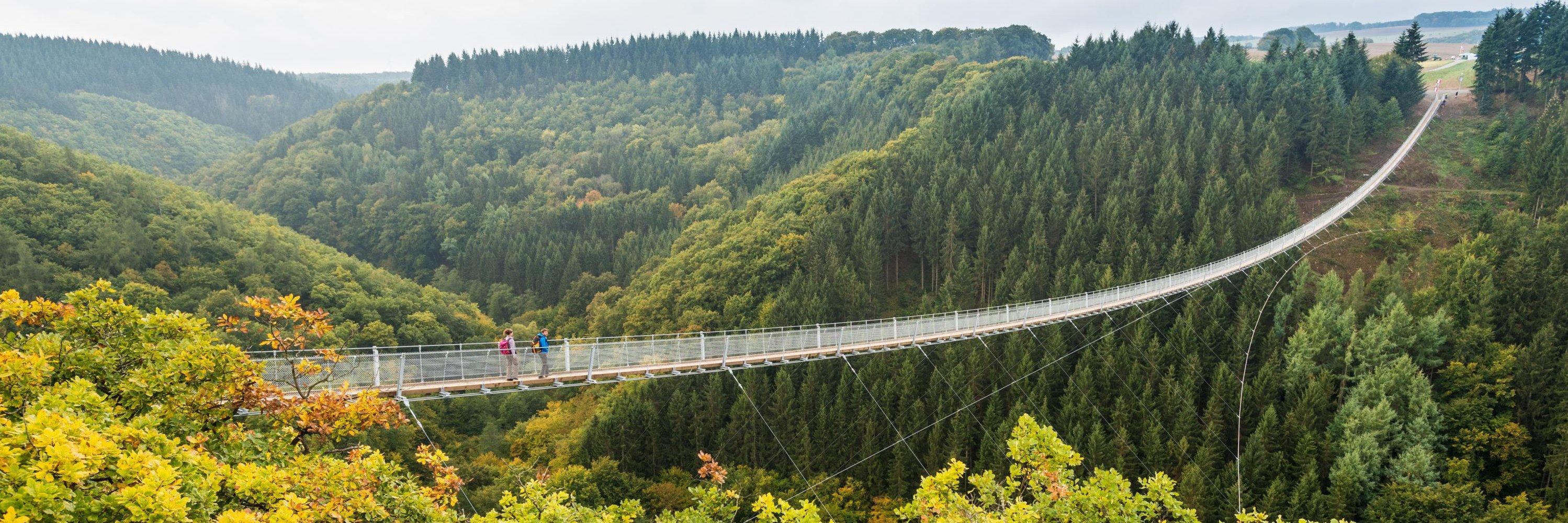 The queen of bridges   Geierlay suspension bridge