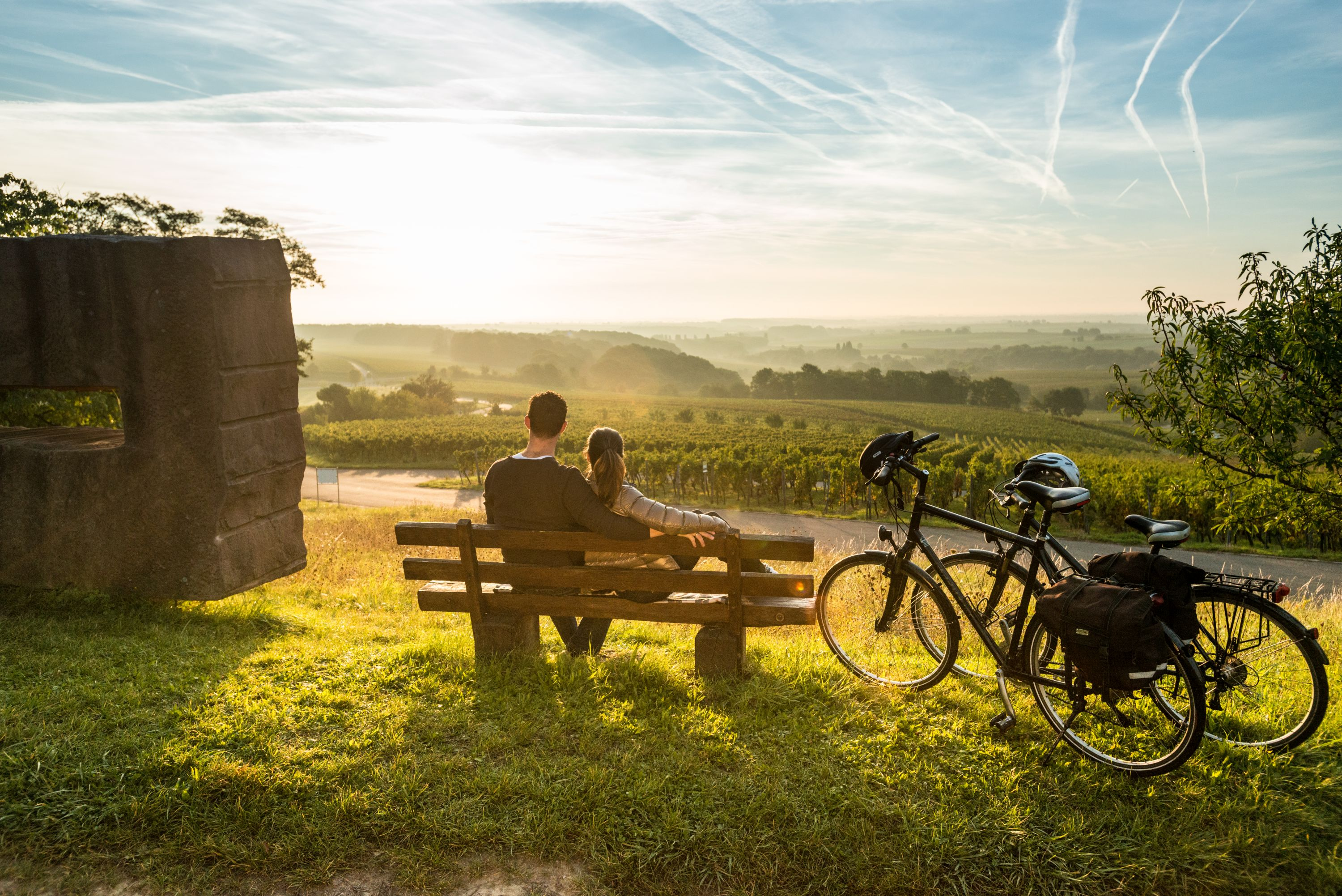 Cycling break with a view of the vineyards near Gleiszellen-Gleishorbach, Palatinate