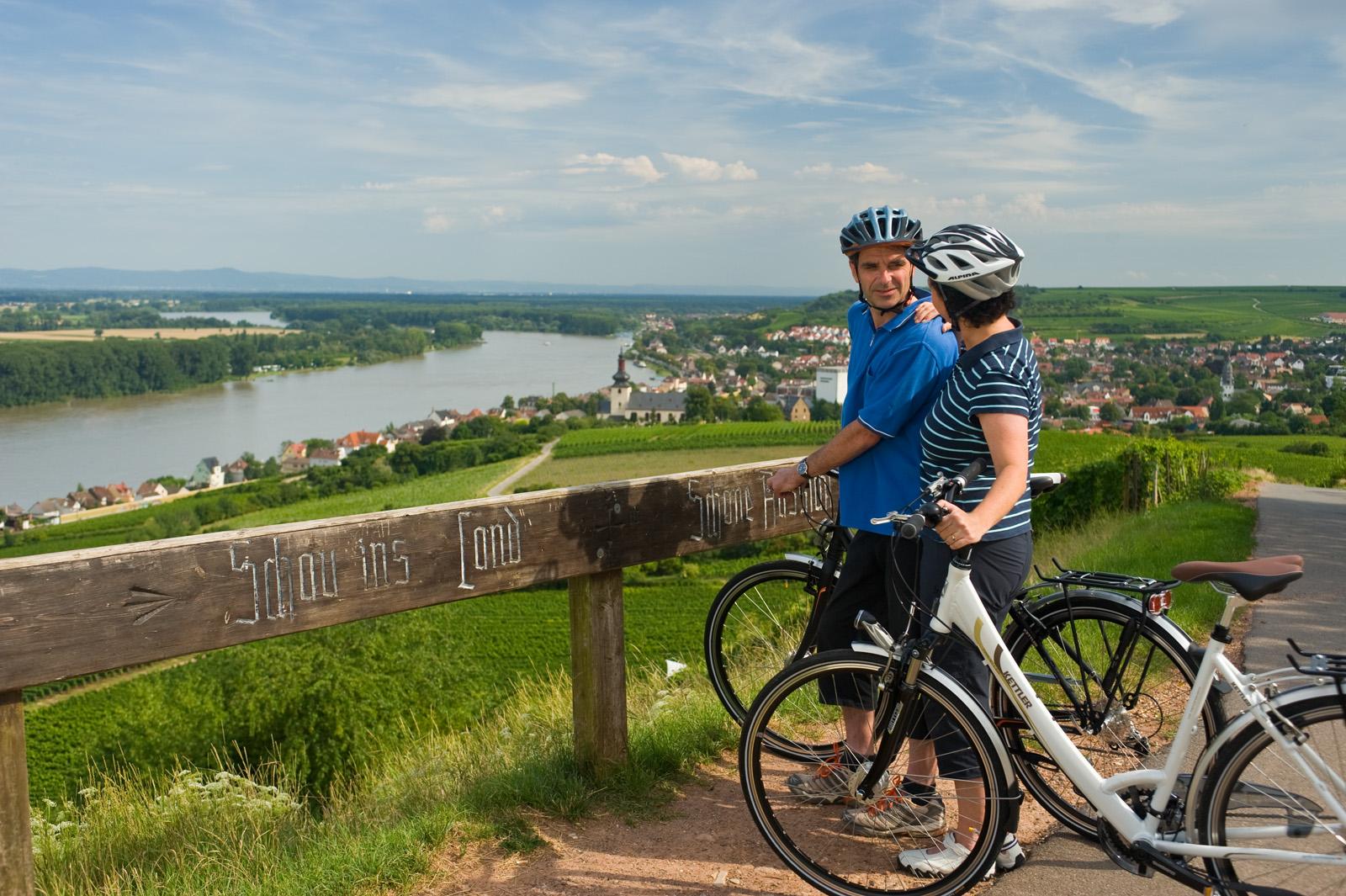 Bicycle ride on the Rhine Cycle Trail near Nierstein, Rhine-Hesse