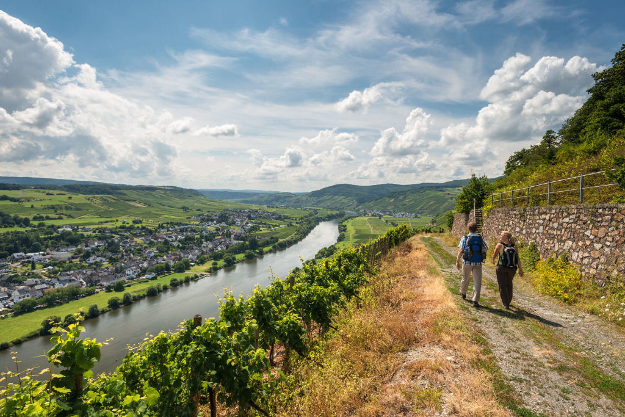 Hiking on the Moselsteig trail near Brauneberg, Moselle
