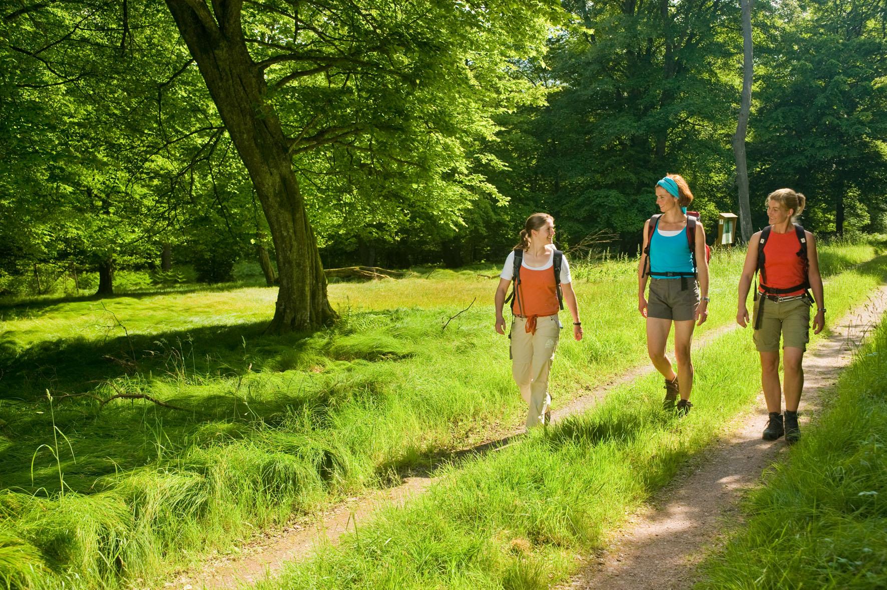 Wanderer auf dem Soonwaldsteig, Nahe