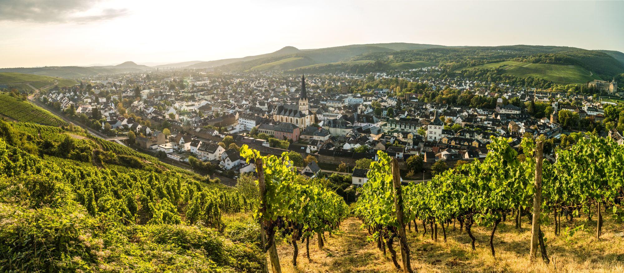 Rode wijn wandelroute bij Bad Neuenahr-Ahrweiler, Ahrdal