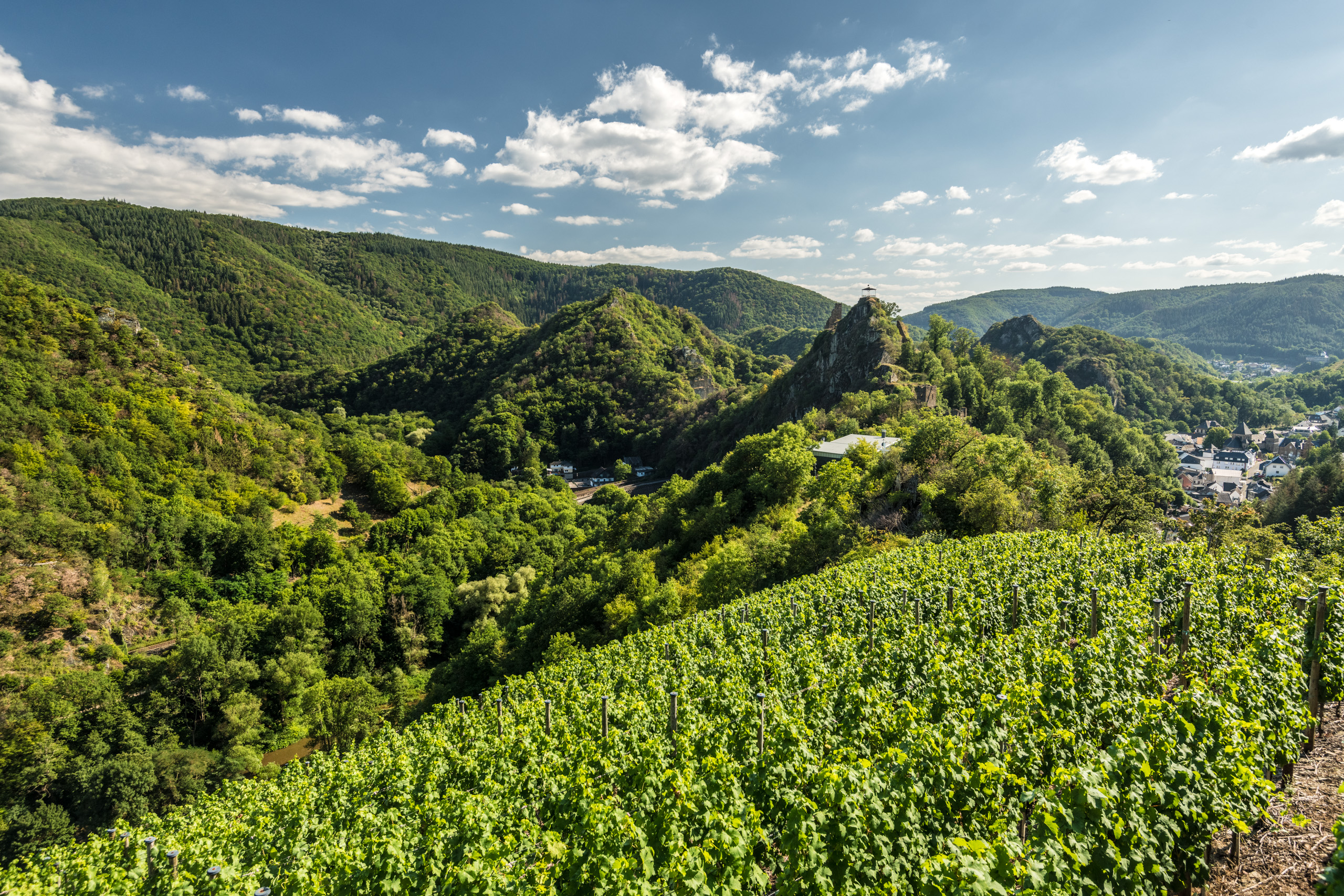 """Most beautiful wine view"" near Altenahr, Ahr valley"