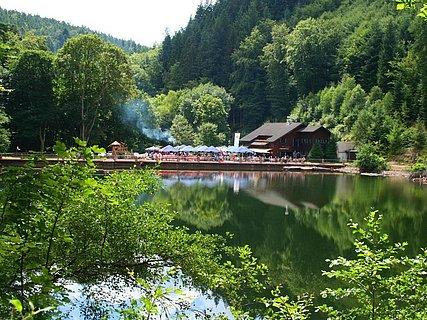 Forsthaus zur Isenach und Weiher