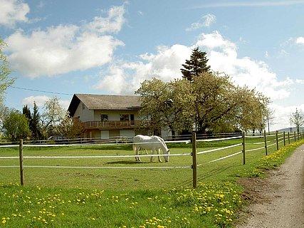 Haus mit Pferd