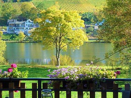 Haus Moselwiese Ausblick Flussblick