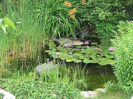 Gästehaus Schenk Garten